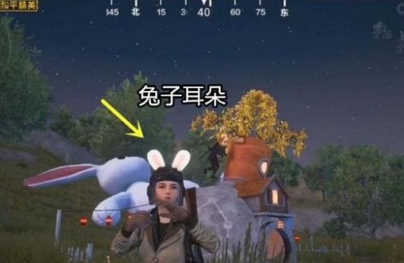 和平精英兔子小屋在哪